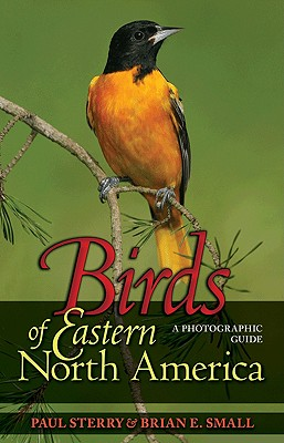 Birds of Eastern North America By Sterry, Paul/ Small, Brian E.